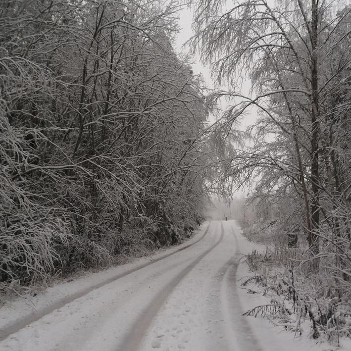 nettisivujen kuvat mellilä talvi markku haanpää